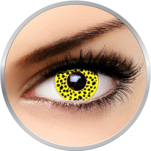 Fantaisie Yellow Cheetah - lentile de contact Crazy pentru Halloween anuale - 365 purtari (2 lentile/cutie)