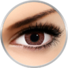 Freshlook Colorblends Brown - lentile de contact colorate caprui lunare - 30 purtari (2 lentile/cutie)