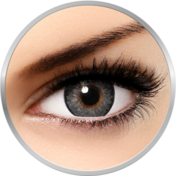 Freshlook One Day Gray - lentile de contact colorate gri zilnice - 5 purtari (10 lentile/cutie)