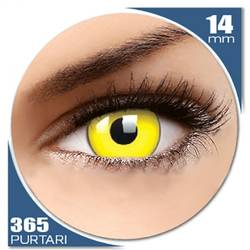 Fancy Yellow - lentile de contact colorate galbene anuale - 360 purtari (2 lentile/cutie)