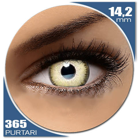 Auva Vision Fashion Lentilles Dream LIGHT SHADOW 365 purtari