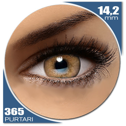 Natural SOFT BROWN 365 purtari de la Auva Vision Fashion Lentilles