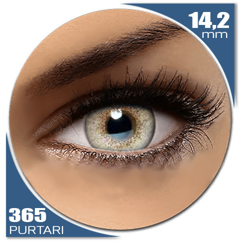 Natural SOFT GRAY 365 purtari de la Auva Vision Fashion Lentilles